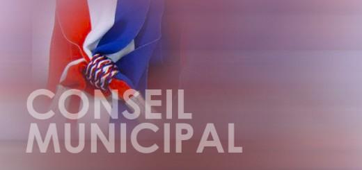 6501_387_conseil-municipal